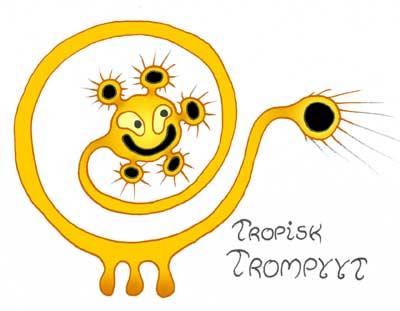 troptromp