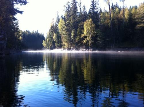 Skogen ved Røyrivann, fra kano ein formiddag hausten 2013.